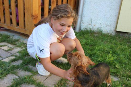 dievča so psom na detskom letnom tábore